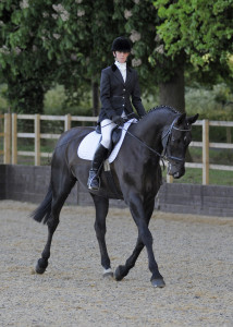 Dressage in refurbished sand and fibre school