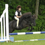 Mini Challenge - Show Jumping #2